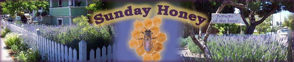 Sunday Honey home page header
